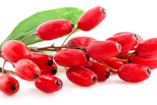 8-khasiat-luar-biasa-dari-goji-berry